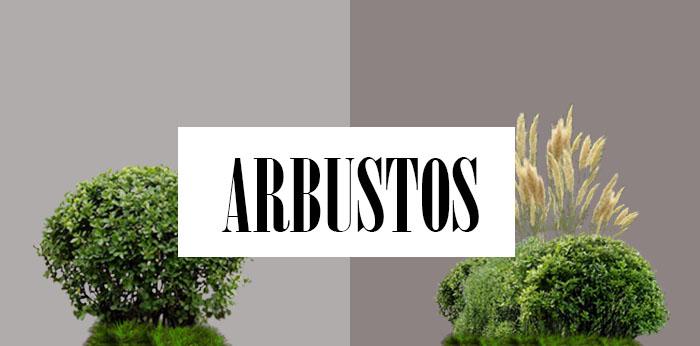 Arbustos - Lista nombre arbustos ...